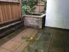 driveway cleaning with a pressure washer
